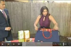 limor picnic